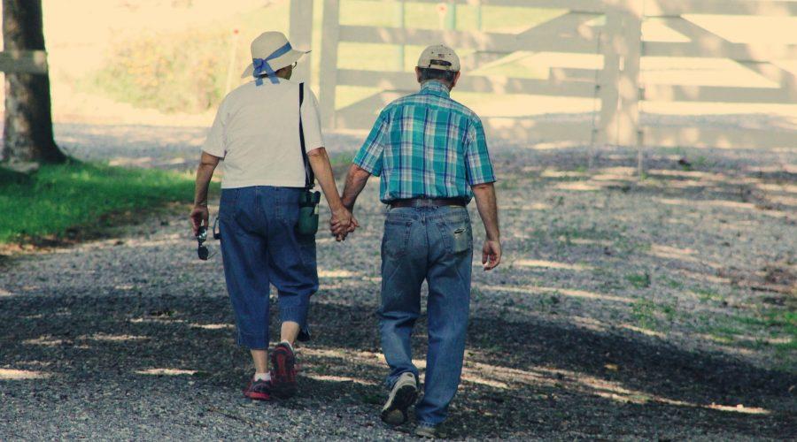 21 7 Peluang Usaha saat Pensiun dari Kerja